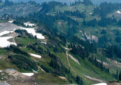 Mt.Rainier vista