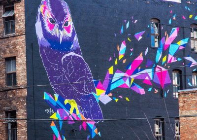 owl Panting on Building