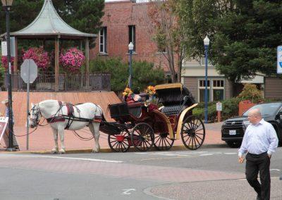 horse-drawn carriage eureka