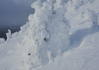 snow sculptur Whistler