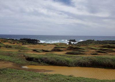 landscape of green sand beach