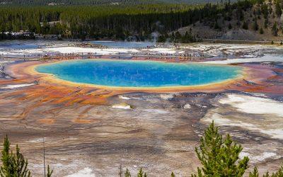 Yellowstone Sommertrip – einzigartiges Reiseziel!