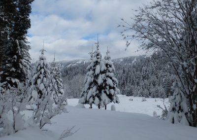 snowy camp ground